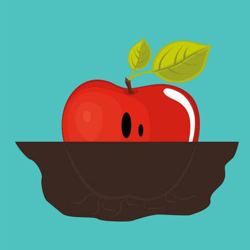Une pomme de terre