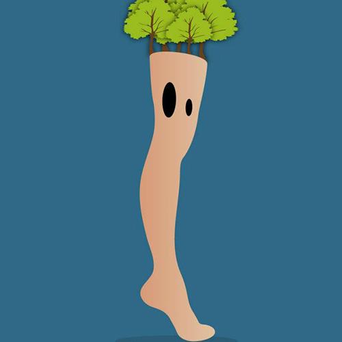 Une jambe de bois